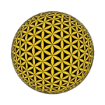 golden flower of life, holy geometry, gulden snede, fibonaci, golden ratio, bron code