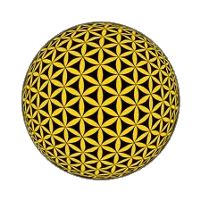 Golden flower of life & Suc7